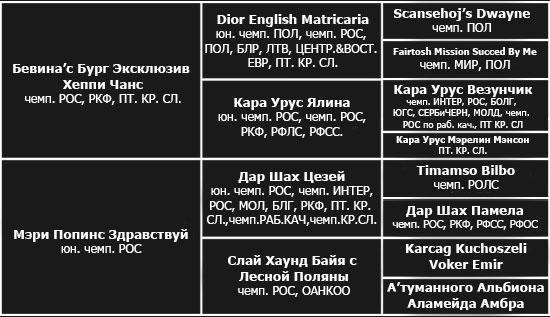 http://berezhki.net/beagle/MAMA_rodoslovnaya.jpg